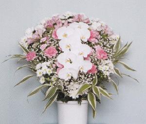 洋風生花 ピンク