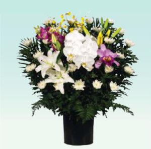 菊供花2 : W700 x H750 x D300(mm)